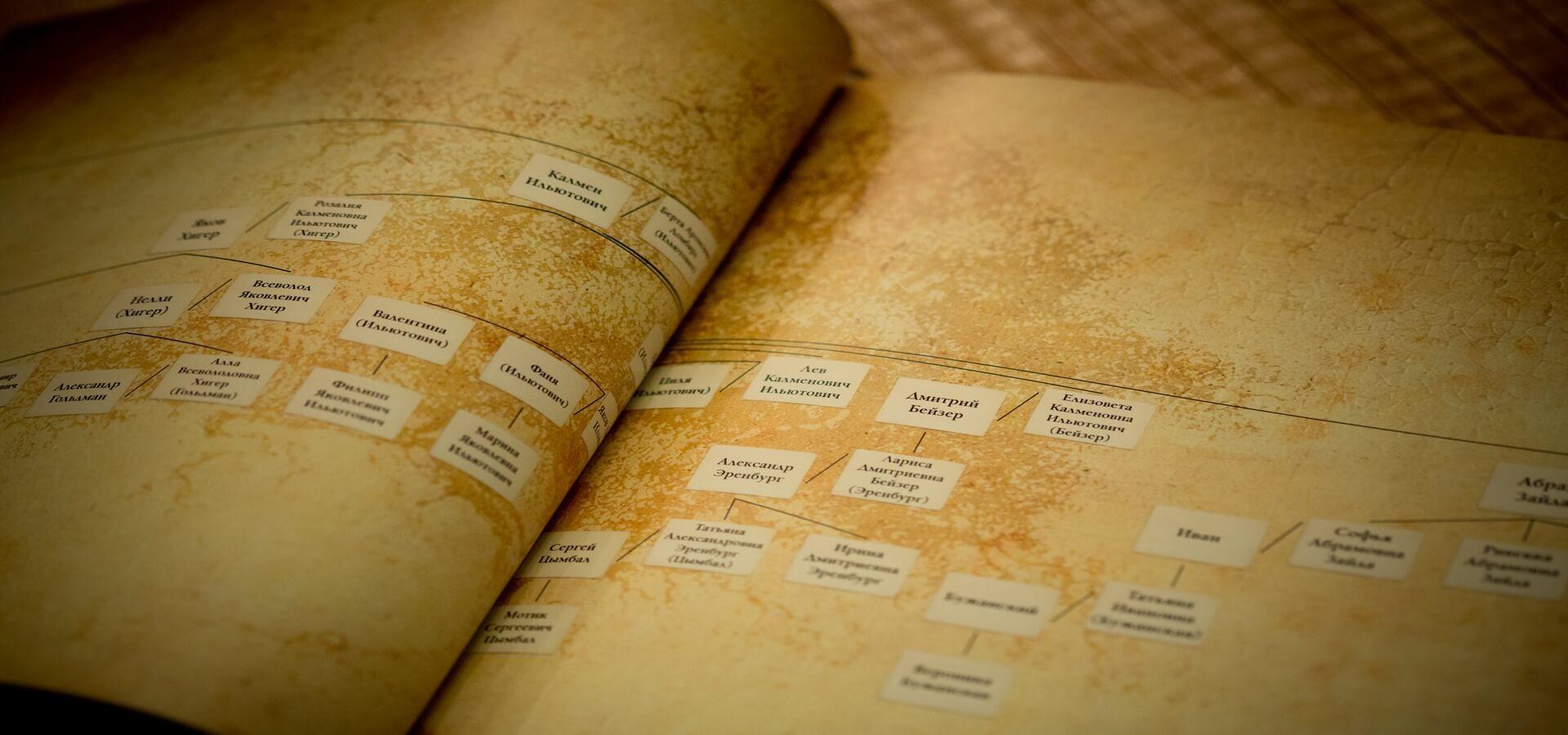 генеалогическая карта в родословной книге