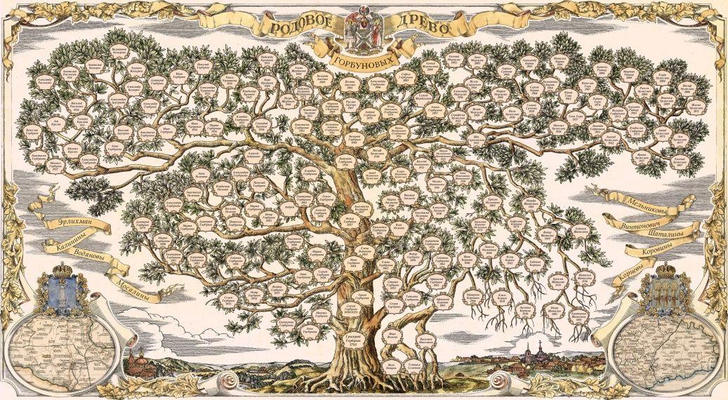 дерево семьи